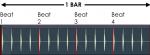 beats and bars.png