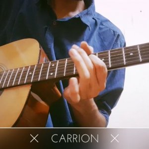 Guitar cover: Carrion (Parkway Drive)